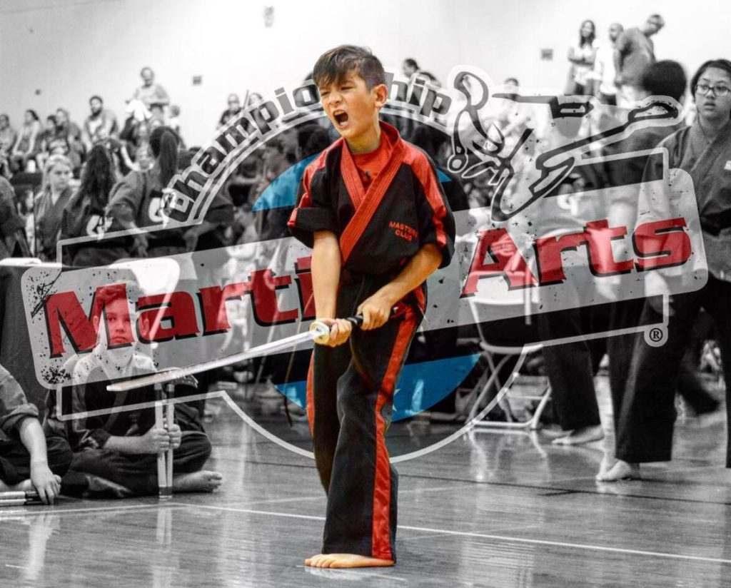 Kids Karate Classes in Conway